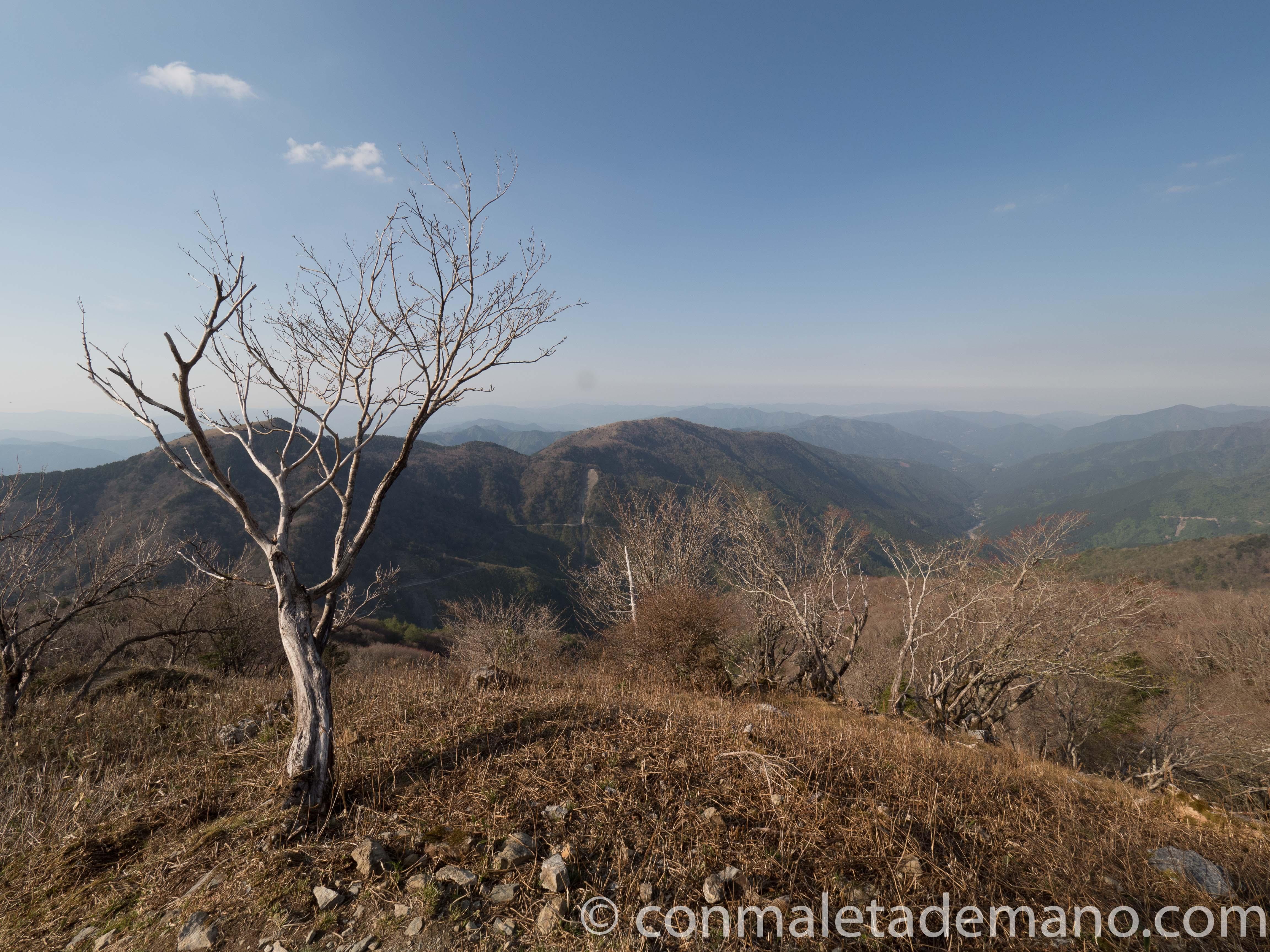 Paisaje subiendo al Monte Tsurugi, Valle de Iya