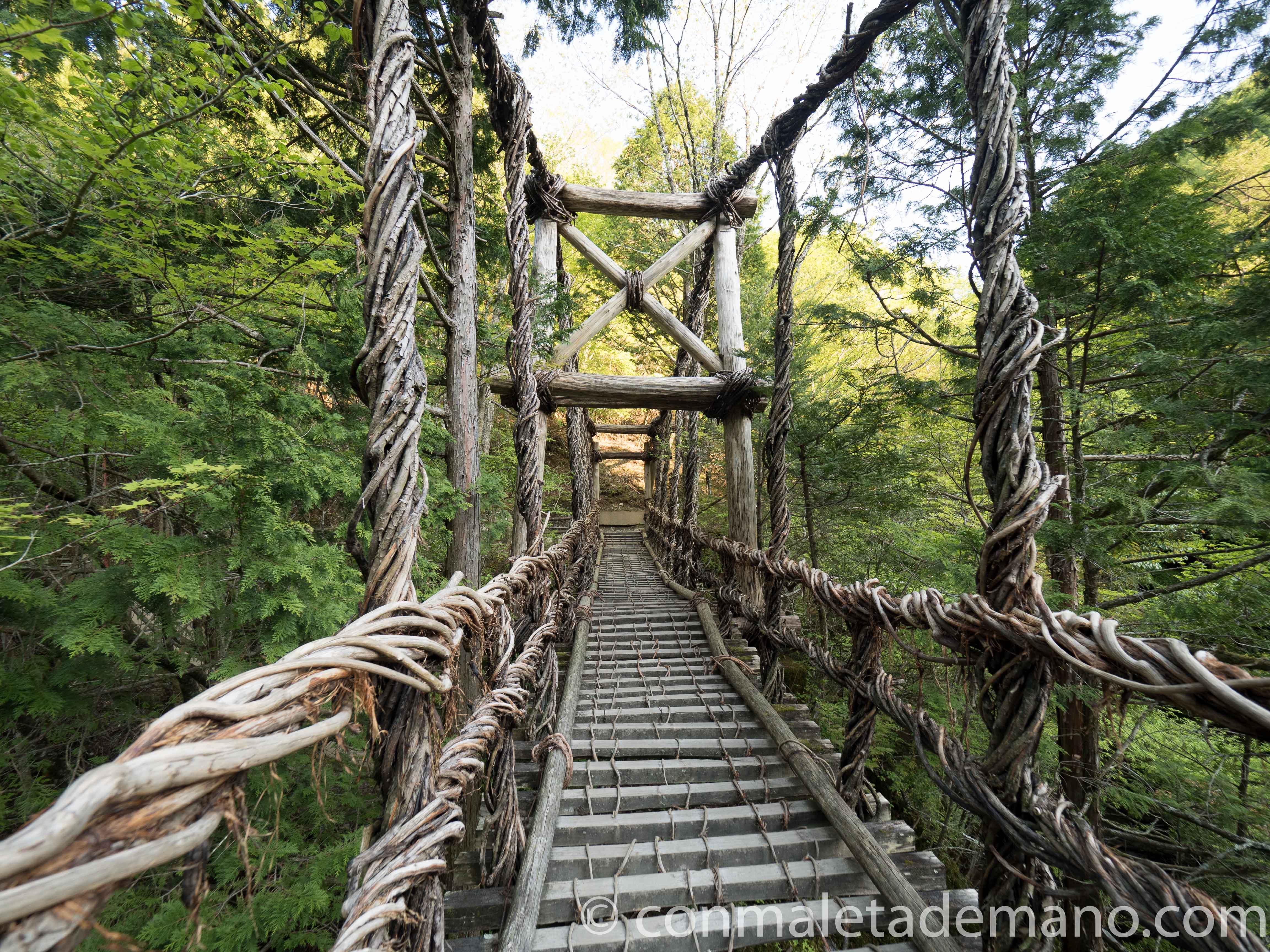 El Puente del Hombre, Okuiya Double Vine Bridges