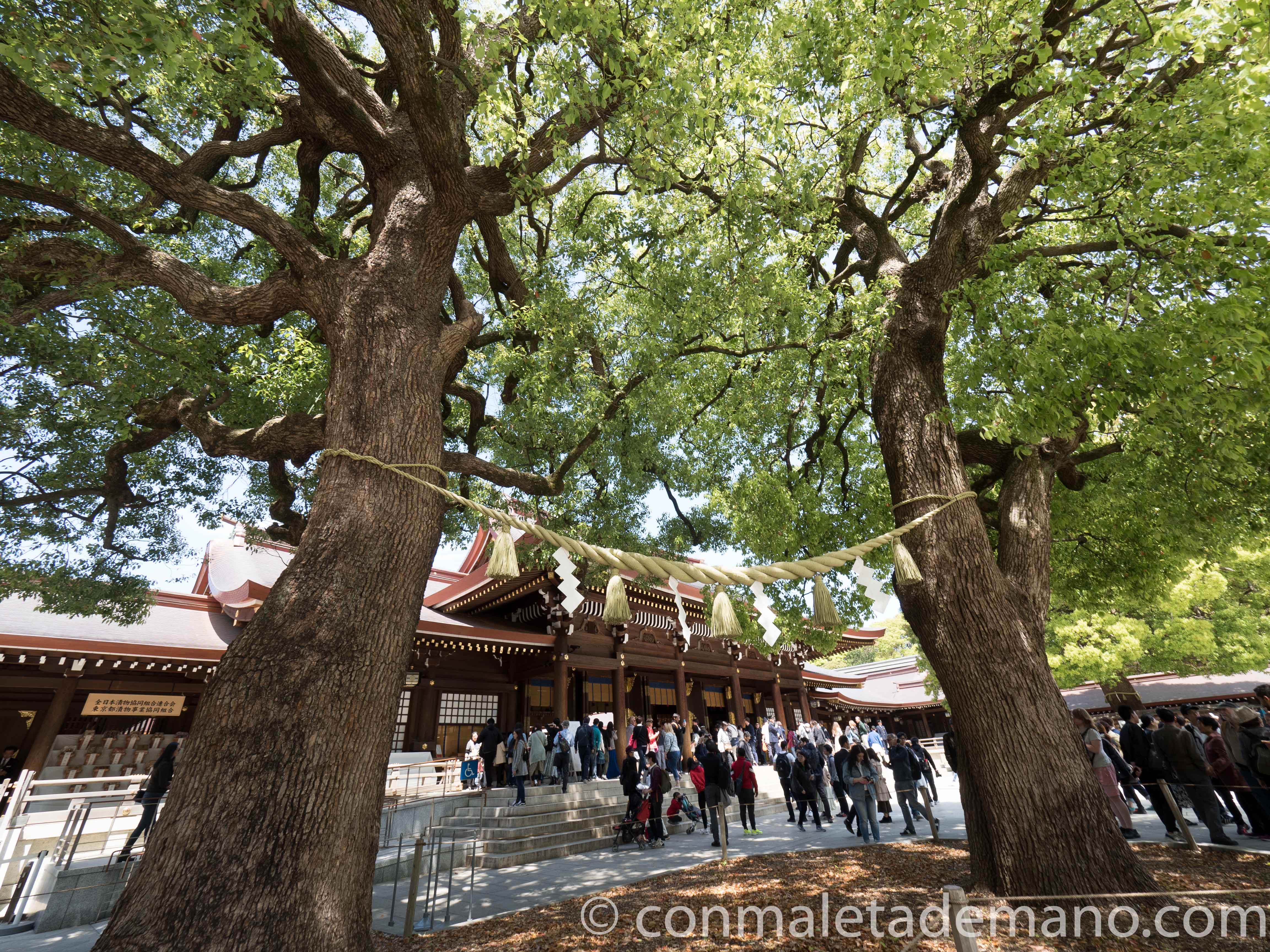 Santuario Meiji, estaban celebrando una boda