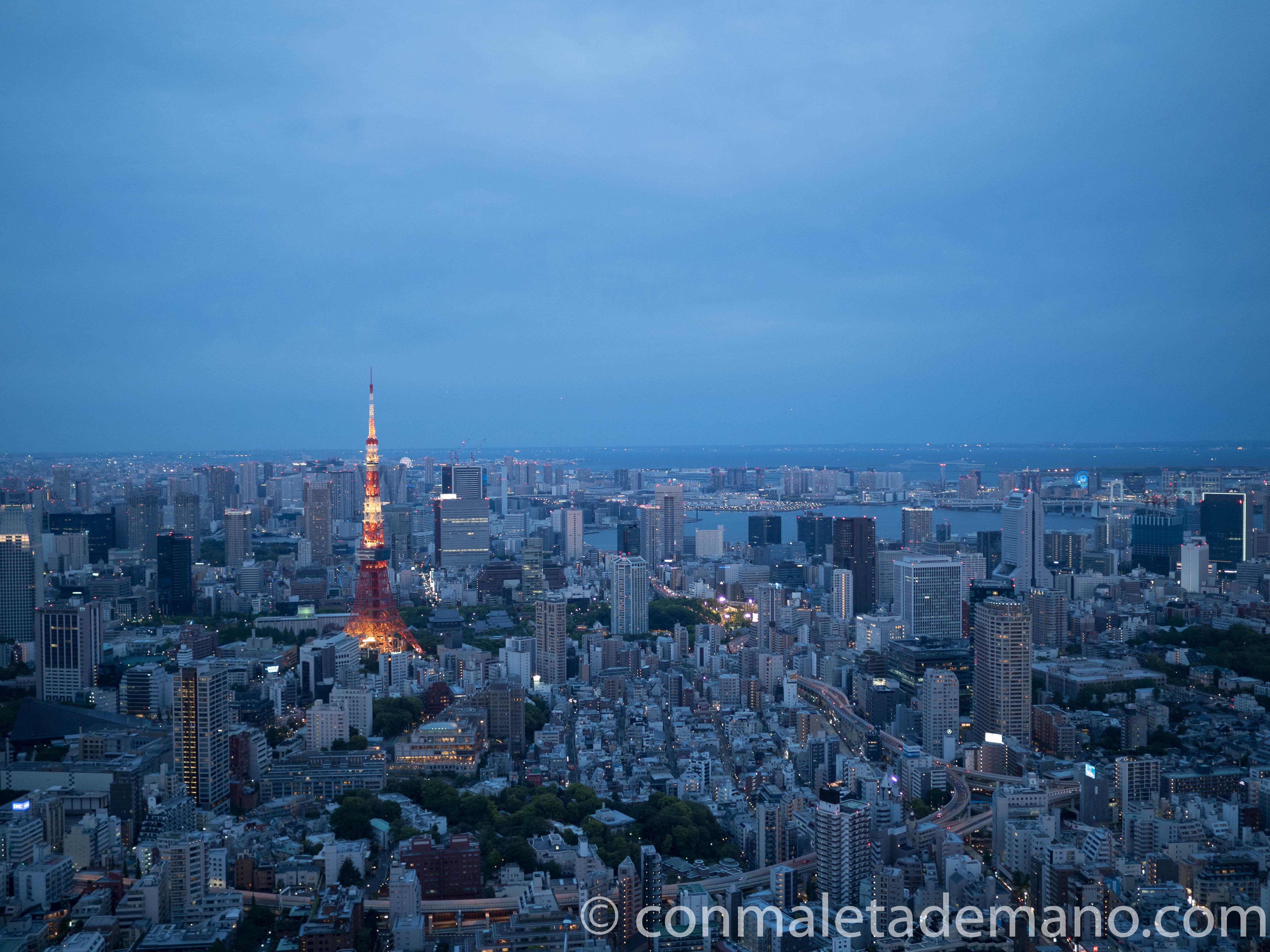 Tokyo desde el Sky Deck de la Torre Mori
