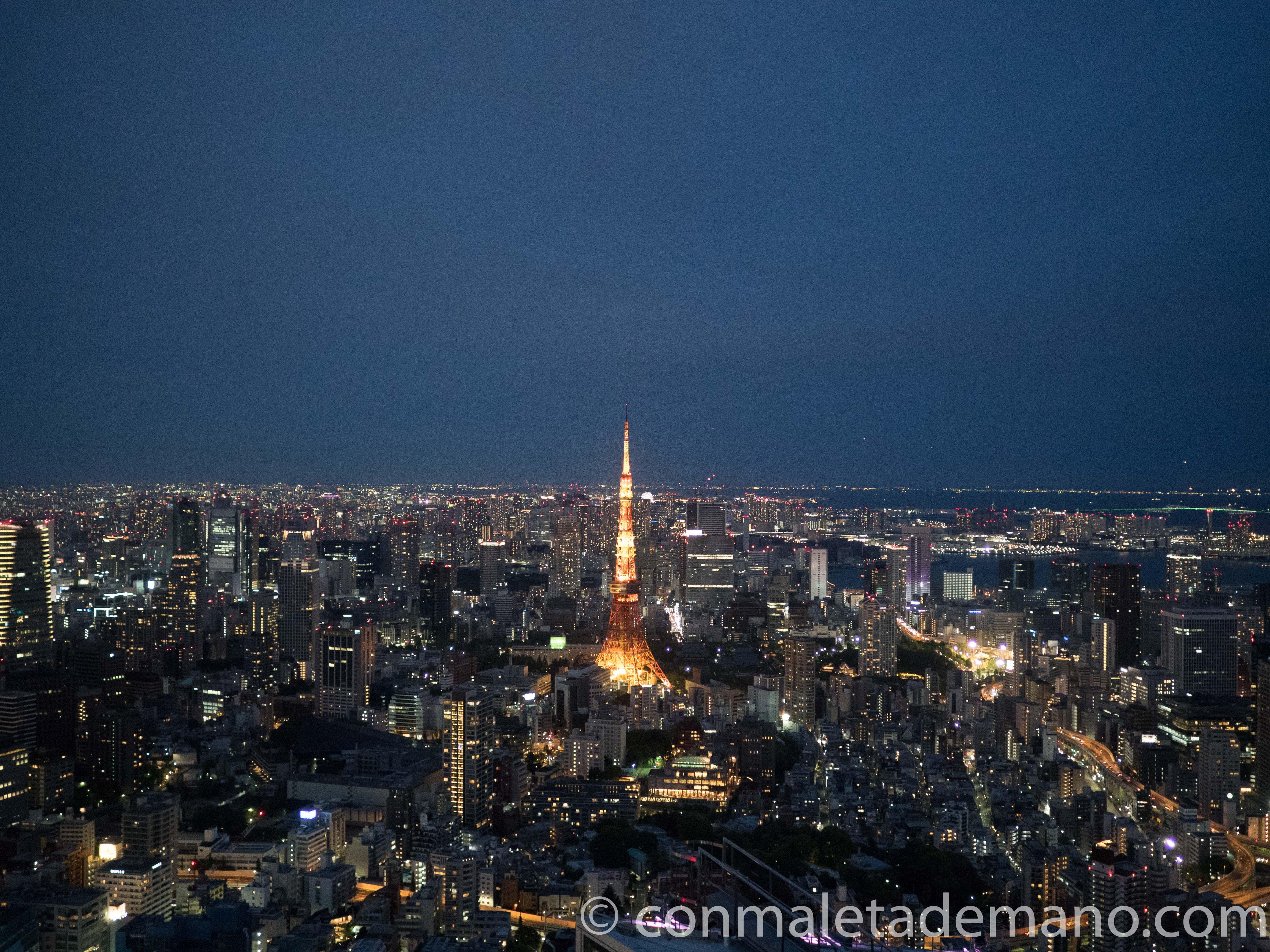 Ya de noche, desde el Sky Deck de la Torre Mori
