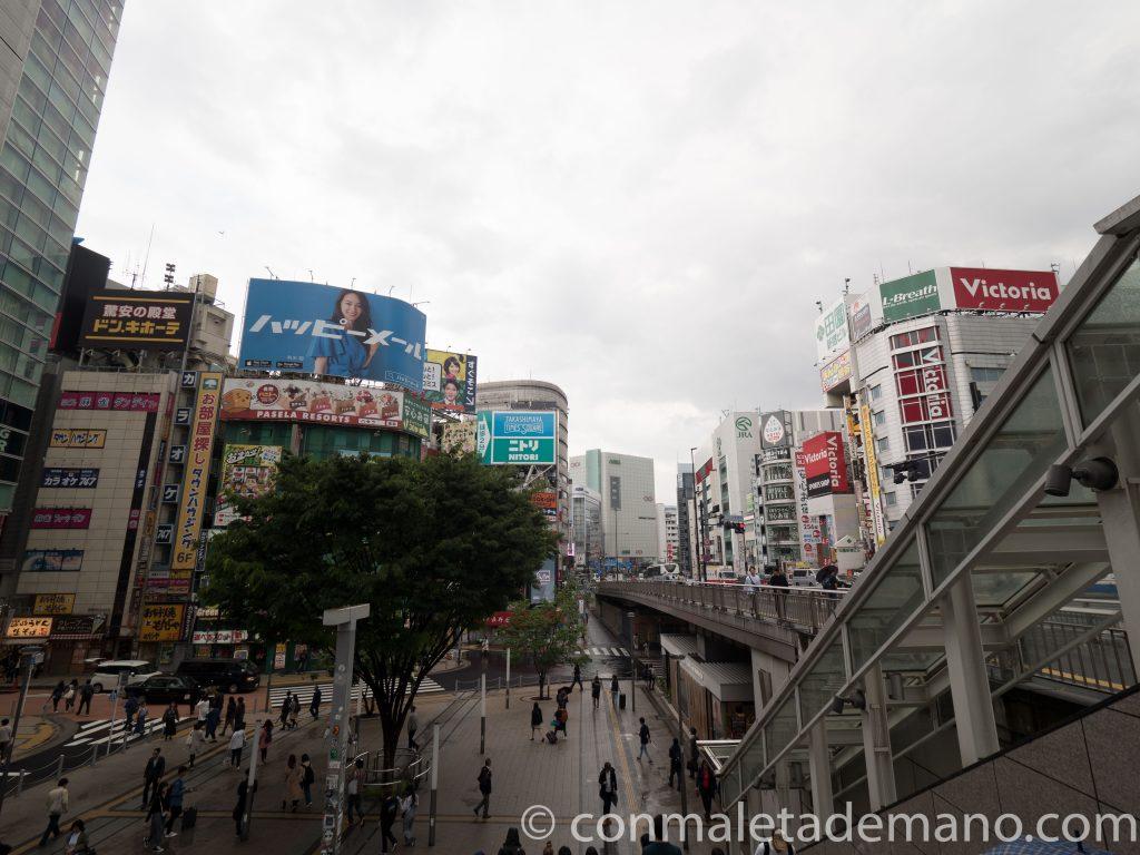 Día 6: El barrio de Shinjuku, en Tokyo