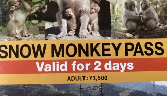 Snow Monkey Pass