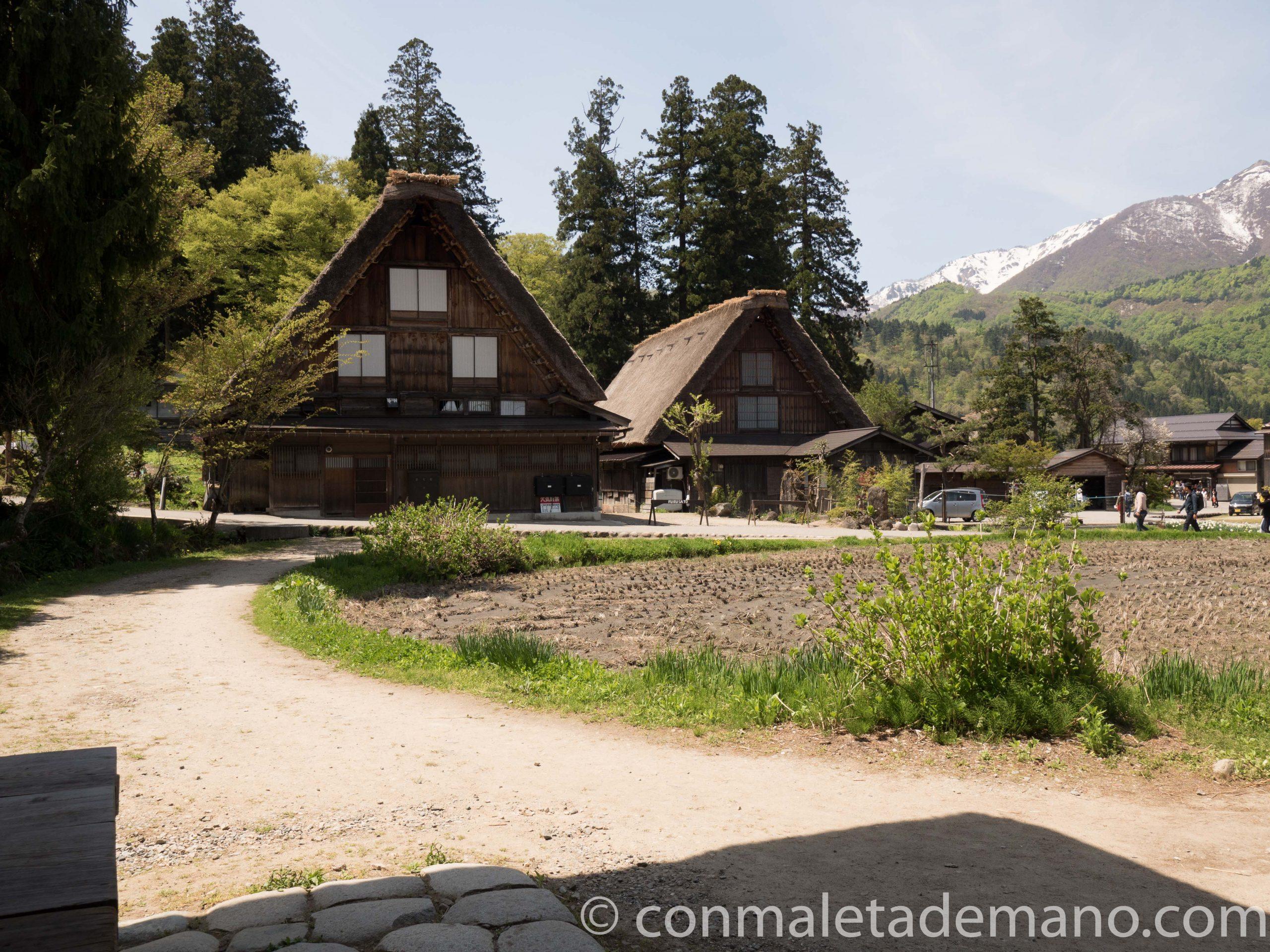 Casas gassho-zukuri en Shirakawago