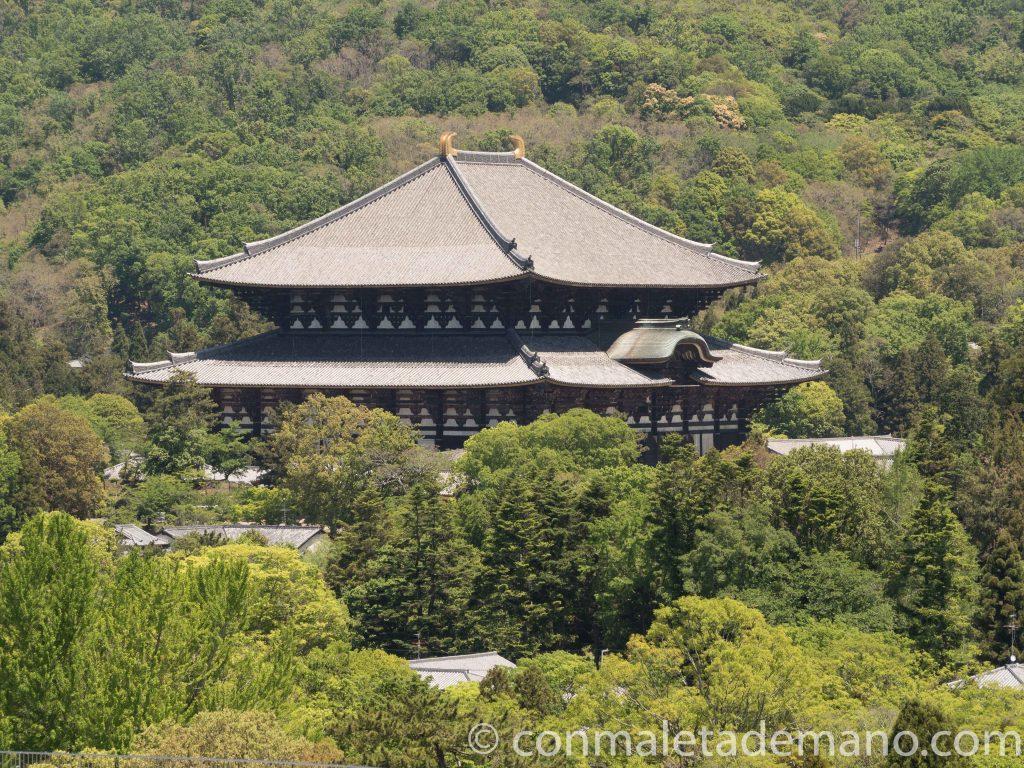 Vista del Todaiji desde la terraza del Edificio del Gobierno de Nara